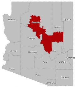 Map Of Arizona Voting Districts.Untitled